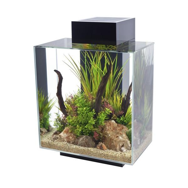 Fluval Edge II Aquarium - Schwarz