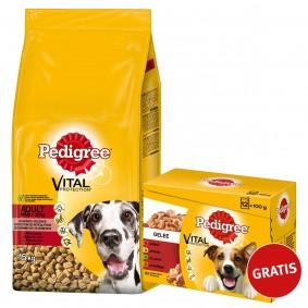 Pedigree Adult Maxi Rind und Reis 15kg plus Multipack Gelee 12x100g GRATIS