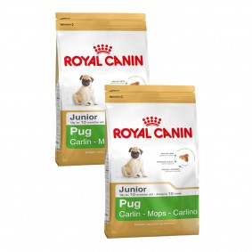 Tschernitz Angebote Royal Canin Pug Junior - 2x1,5kg