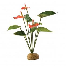 Exo Terra Terrarium Bodenpflanze - Flamingoblume