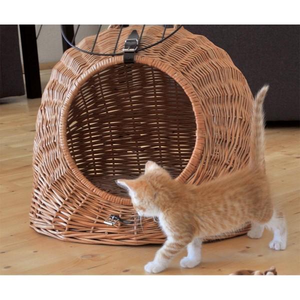 Aumüller Katzenhöhle gesottene Weide