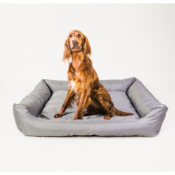 Dog Bed Solution DBS orthopädisches Sofa Pura grau 65x50cm