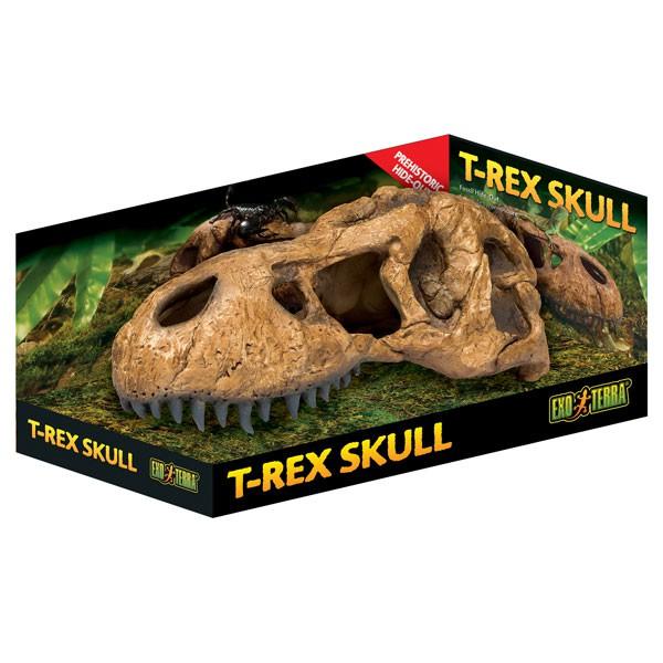Exo Terra T-Rex Schädel