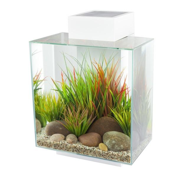 Fluval Edge II Aquarium - Weiß