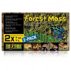 Exo Terra Substrat pour terrariums Mousse de forêt Paquet de 2