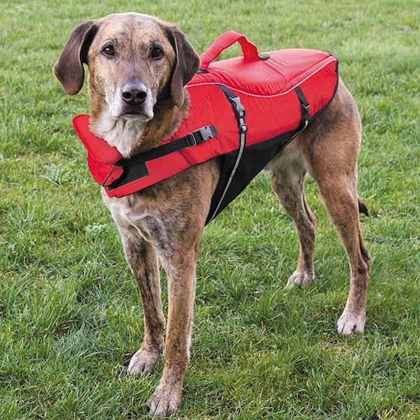Schwimmweste für Hunde S