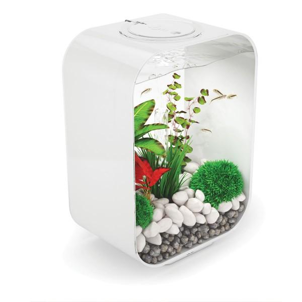 LIFE LED Aquarium 15l Standard - Weiß