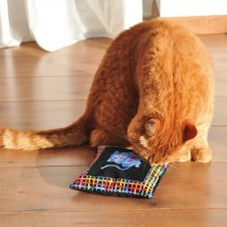 Aumüller Katzenspielkissen mit Baldrian - Cool Cats Luxusedition