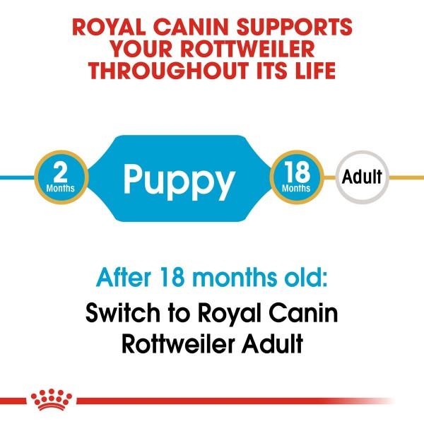 ROYAL CANIN Rottweiler Puppy Welpenfutter trocken