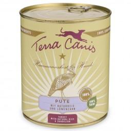 Terra Canis Pute mit Naturreis und frischem Löwenzahn