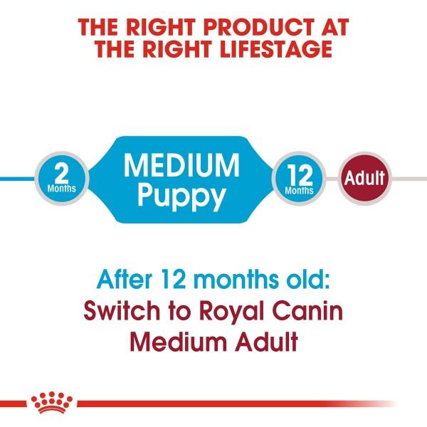 ROYAL CANIN MEDIUM Puppy Trockenfutter für Welpen mittelgroßer Hunderassen