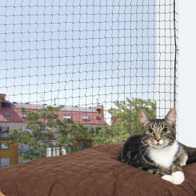 Cat Protect Katzen-Schutznetz schwarz -