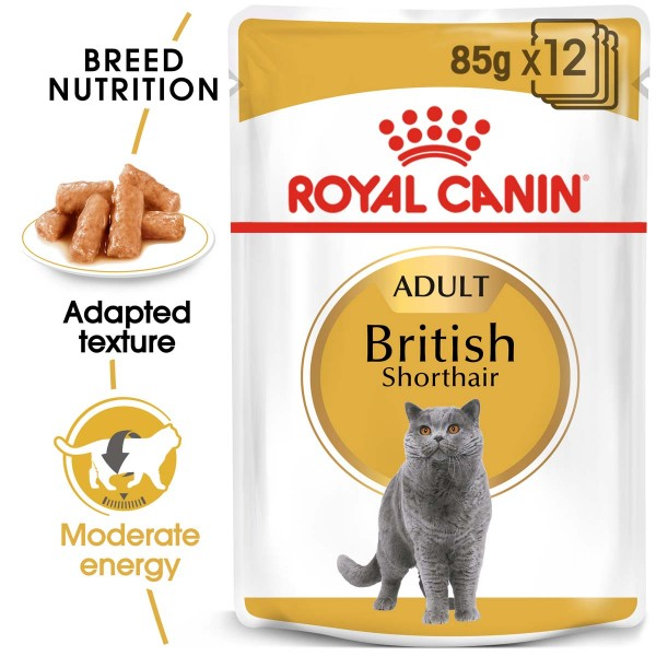 ROYAL CANIN ADULT British Shorthair 10kg + Nassfutter in Soße 12x85g