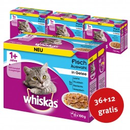Whiskas Adult 1+ Fischauswahl in Gelee 48x100g
