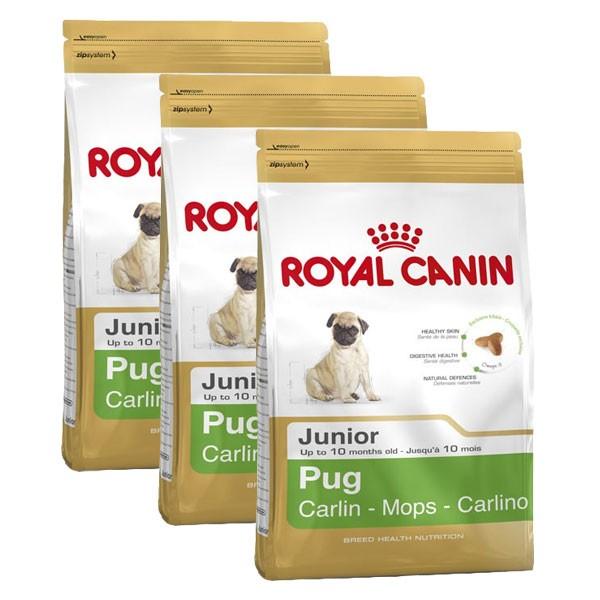 Royal Canin Hundefutter Pug Junior 3x1,5kg für junge Möpse