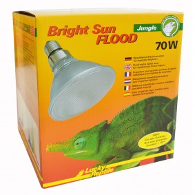 Lucky Reptile Bright Sun FLOOD Jungle