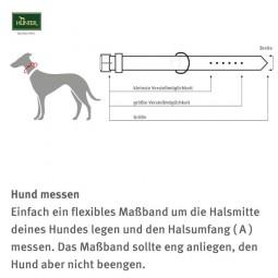 Hunter Halsung Neopren Vario Plus Hellgrün/Petrol