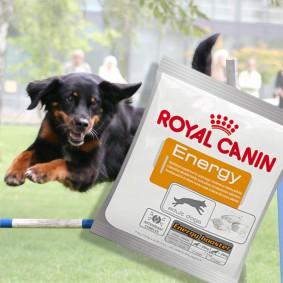 Royal Canin Energy Hundesnack 50g