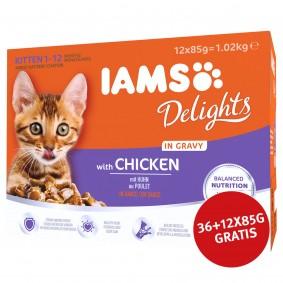 Iams Delights Multipack Kitten Huhn in Sauce 36x85g + 12x85g GRATIS
