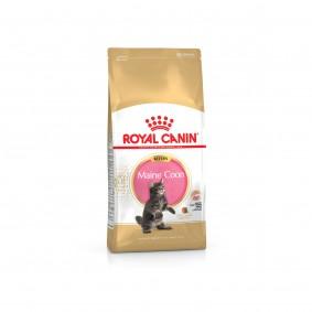 Royal Canin Katzenfutter Kitten Maine Coon 36