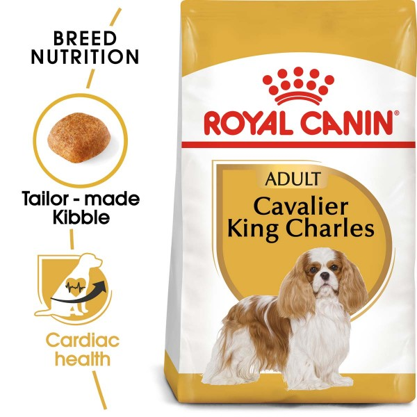 ROYAL CANIN Cavalier King Charles Adult Hundefutter trocken