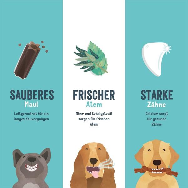 Edgard & Cooper Doggy Dental Erdbeere/Minze S