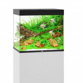 Juwel Lido 200 Aquarium ohne Schrank