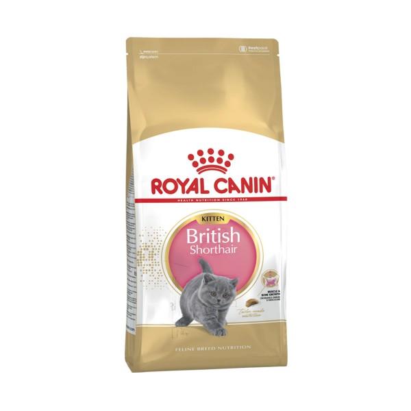 Royal Canin Chaton British Shorthair