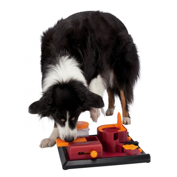 Trixie Dog Activity Strategiespiel Poker Box 2