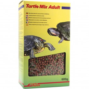Lucky Reptile Turtle Mix Adult