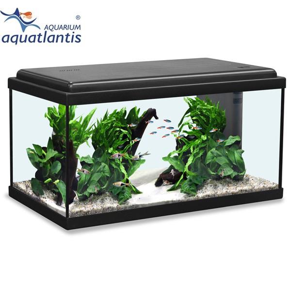 aquatlantis aquarium advance led 60 g nstig kaufen bei zooroyal. Black Bedroom Furniture Sets. Home Design Ideas
