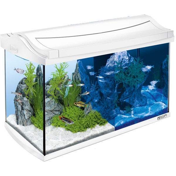 tetra aquaart led aquarium komplett set wei kaufen bei zooroyal. Black Bedroom Furniture Sets. Home Design Ideas