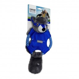 Cesar Millan Hundespielzeug Ted D' Flying Badger