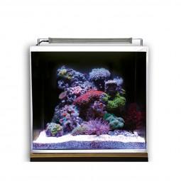 Dupla Marin Meerwasseraquarium Ocean Cube 50 Set