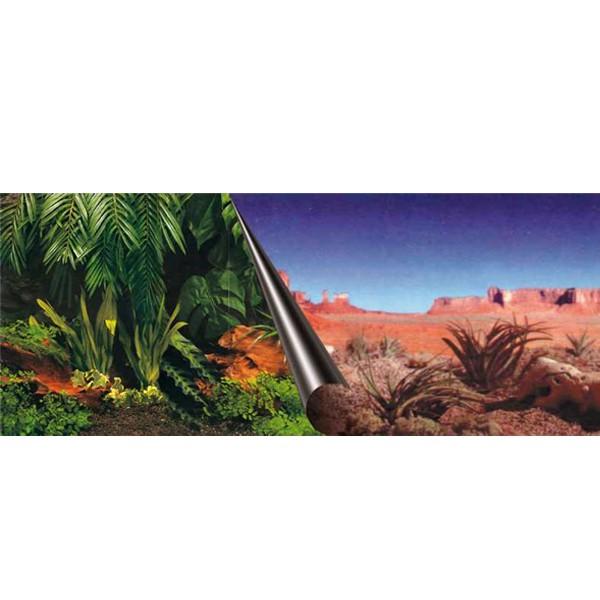 Aquarium Photo-Rückwand Jungle+Desert - 80x40cm