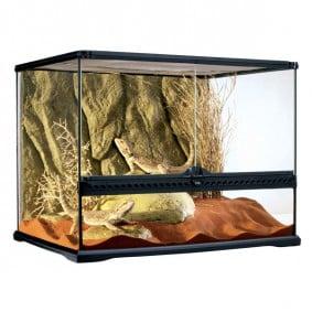 Terrarium Naturel Moyen - Spécial Réptilien et Amphibiens