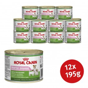 Royal Canin Starter Mousse 12x 195g