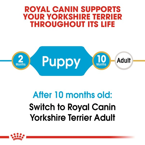 ROYAL CANIN Yorkshire Terrier Welpenfutter trocken