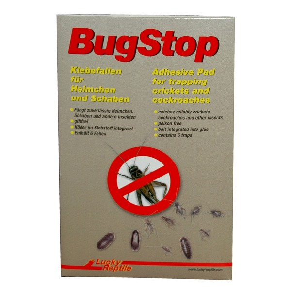 Lucky Reptile Bug Stop - Heimchen Klebefalle