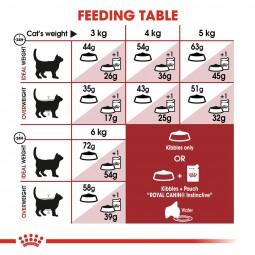 ROYAL CANIN FIT Trockenfutter für aktive Katzen
