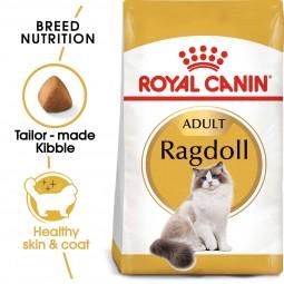 ROYAL CANIN Ragdoll Adult Katzenfutter trocken