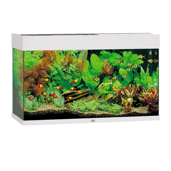 Juwel Rio 125 LED Komplett Aquarium ohne Schran...