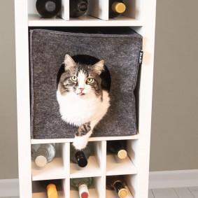 D&D Cat Cube schwarz