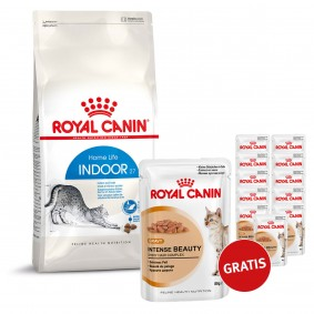 Royal Canin Katzenfutter Indoor 27 10kg plus Royal Canin Intense Beauty in Sosse 12x85g GRATIS