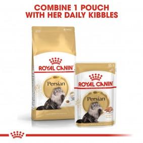 ROYAL CANIN ADULT Persian Trockenfutter 10kg + Nassfutter 48x85g