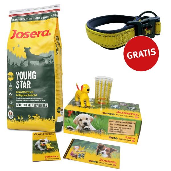 Josera Welpenbox Young Star + Reflektionshalsband GRATIS