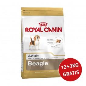 Royal Canin Beagle Adult 12kg+3kg Gratis!