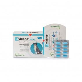 Vetoquinol Zylkène® Kapseln für Hunde gegen Stress- und Angstzuständen