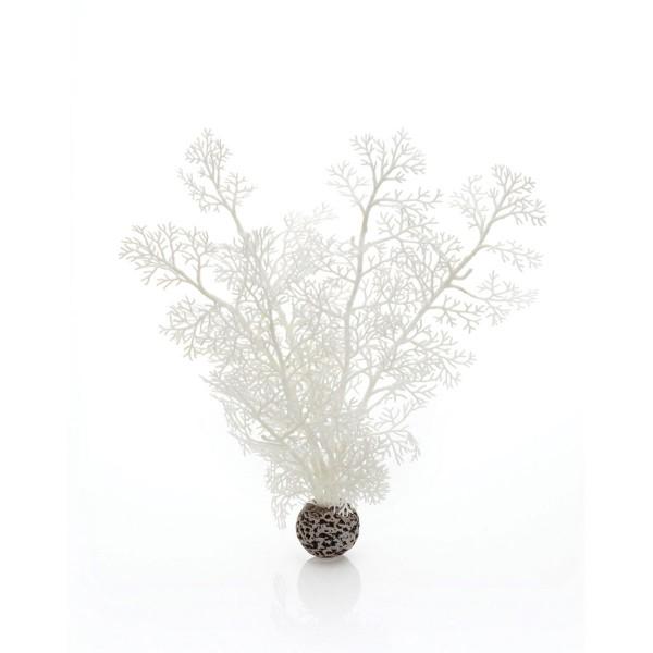biOrb Aquariumpflanze weißer Seefarn