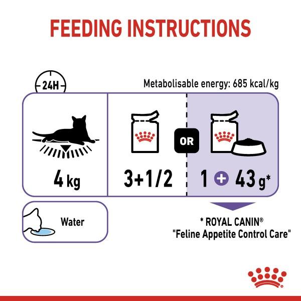 ROYAL CANIN APPETITE CONTROL CARE Nassfutter in Gelee für erwachsene Katzen